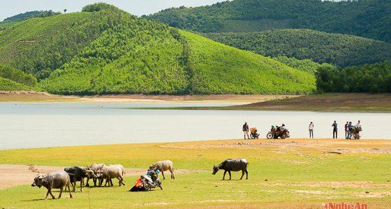 Đánh thức tiềm năng du lịch cộng đồng huyện Yên Thành