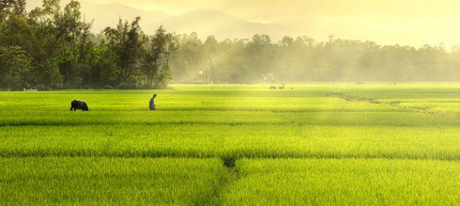 Bật mí 5 điểm du lịch nhất định phải ghé khi đến Yên Thành